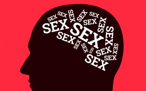 Your brain effects of sex!